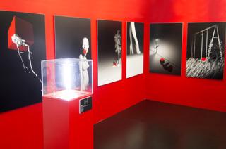 Exposition personnelle, Le Cube, 2013.
